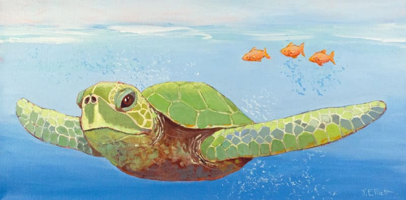 Three Fish & A Turtle
